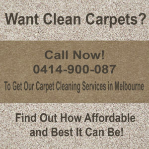 Why Do Homeowners Prefer Carpet Steam Cleaning
