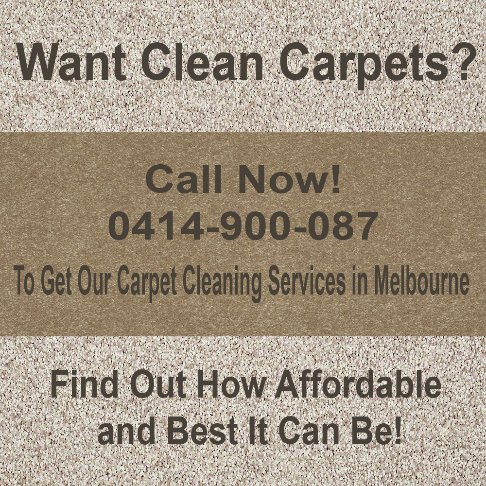 Homeowners Prefer Carpet Steam Cleaning Why